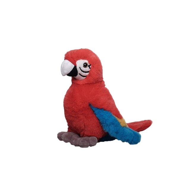 Papagei Rot-Blau