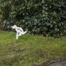 """Hundeschild """"Nein!"""" in Weiß, h ca. 31,5 cm"""