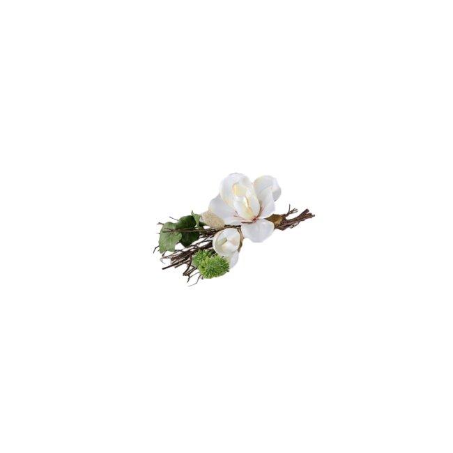 Magnolie creme, ca. 21 cm