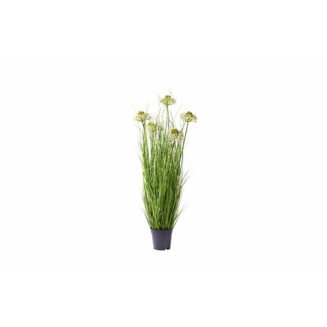 Gras im Topf mit Blüten, ca. 65 cm