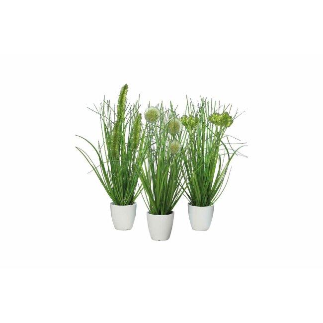 Gras im Topf, grün, ca. 36 cm, 3er Set