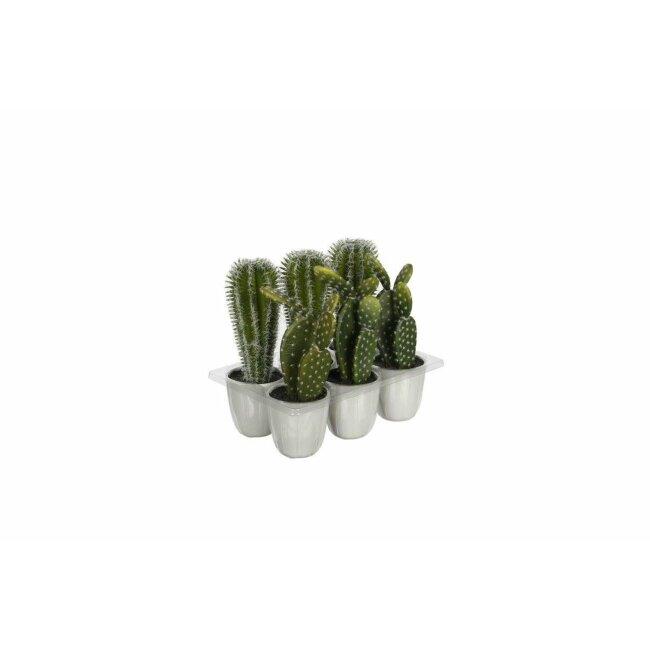Kaktus im Topf, ca. 22 cm